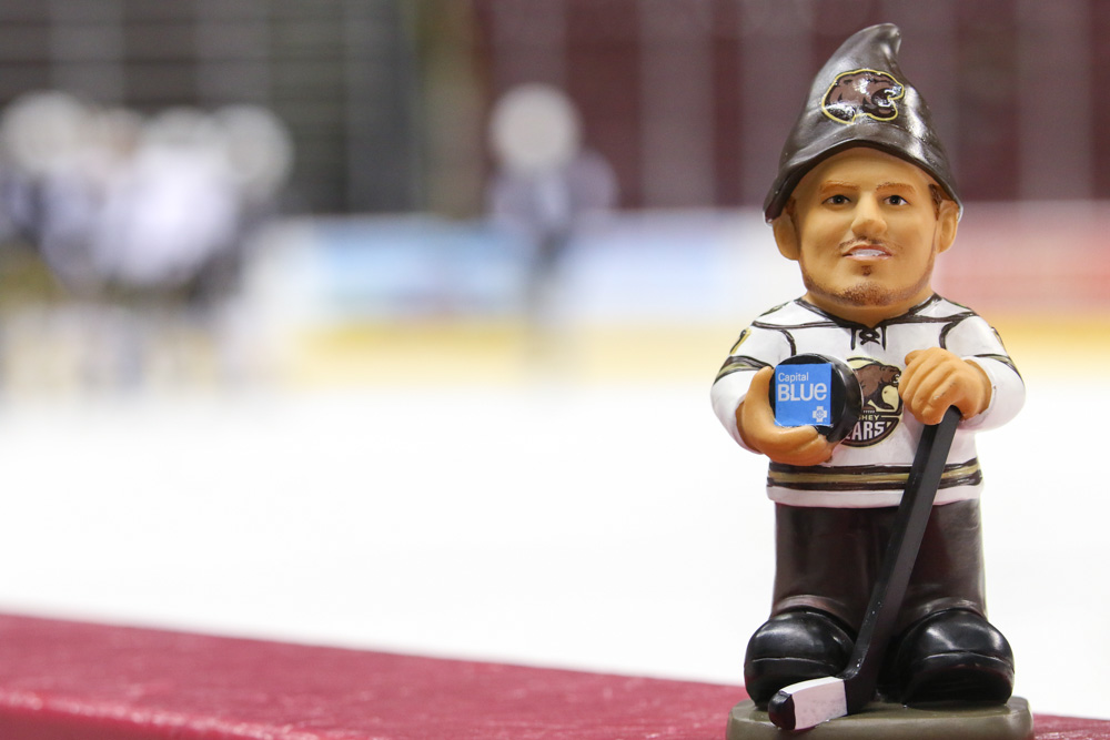 chris bourque garden gnome-4